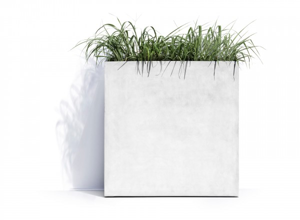 Cosapots New York Wheels plantenbak wit 80 x 30 x 82 cm met plant